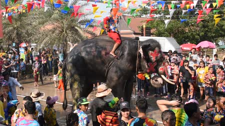 Ayutthaya Thailand April 14, 2019 : elephant splashing water between tourist in Songkarn festival