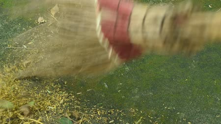 süpürge : garden broom sweeping falling flower and dry leaf on ground Stok Video