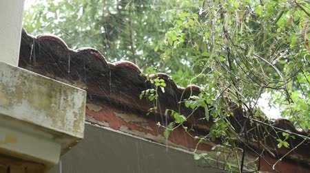 heavy rain falling on home wall and roof