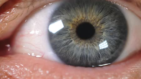 Human male adult eye 4K UHD macro video