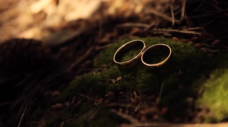 koronka : Wedding rings on a moss