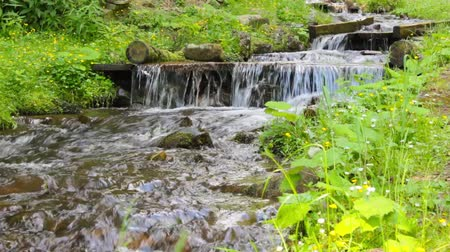 murmur of fresh mountain stream with a small waterfall in the grass