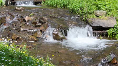 fresh mountain stream with waterfal
