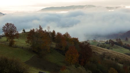 foggy and hot sunrise in Carpathian mountains