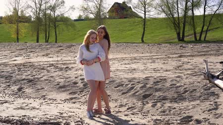 sand lia : One girl hugged another on the beach, they are smiling, against the backdrop of trees and a house on a hill Stock Footage