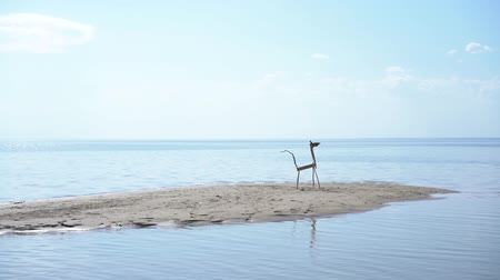 sand lia : A wooden animal sticks on a sandy island in the middle of the water. Abstract summer video concept.