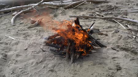 sand lia : Bonfire burns on the beach close up in slow motion