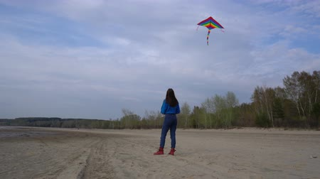 Girl with a kite on the shore