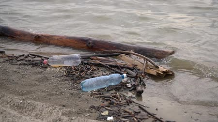 Plastic bottles and logs float near the shore. Environmental pollution.