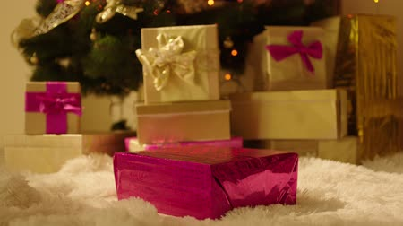 přítomný : Woman is putting pink present box in front of the Christmas tree. There already are some gift boxes. Dostupné videozáznamy