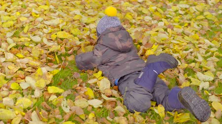 Little boy making an angel in autumn leaves
