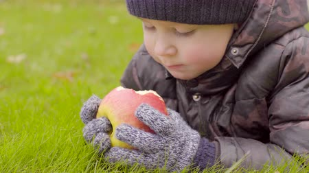 Little boy eating apple lying on the grass Stock Footage