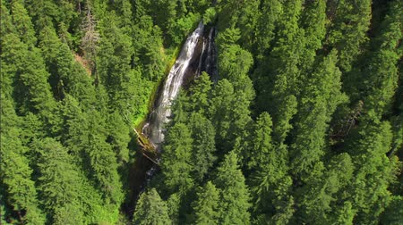 ingiliz columbia : national forest waterfall aerial