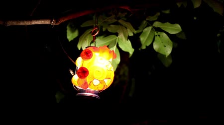 direct current : Colorful Lantern Hanging On A Branch