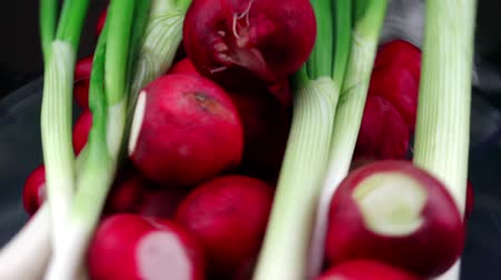 shallot : Radishes And Spring Onion Rotating On A Plate Stock Footage