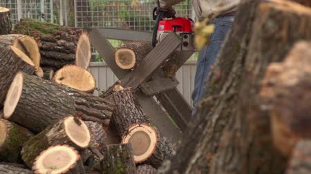 лесозаготовки : Sawing Wood With A Chainsaw 01