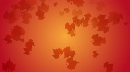 yüzde : Autumn leaves falling down with orange and yellow background. Stok Video