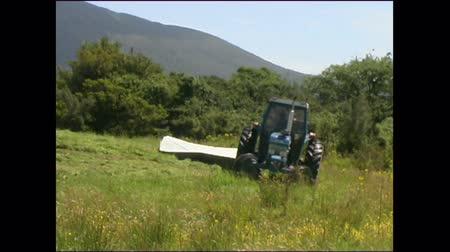 Tractor mowing grass for silage, West Coast, New Zealand