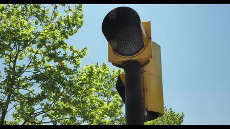 stoplight : Flicking orange traffic light at blue sky background and green tree on it s back Stock Footage