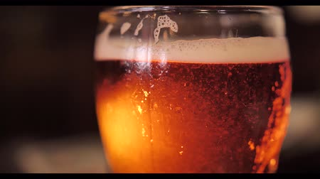 quartilho : A glass of cold refreshing beer Stock Footage