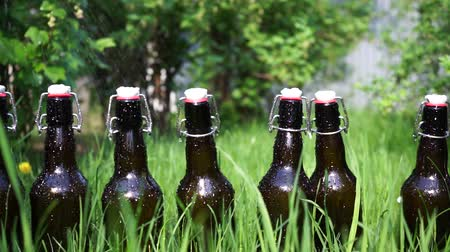 Fresh beverages on a lawn Stock Footage
