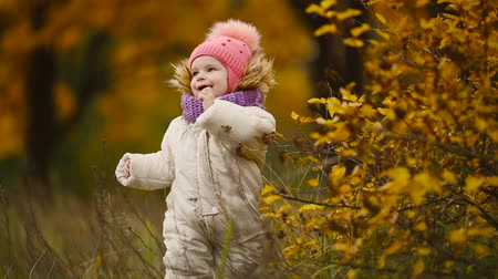 separação : Little girl in autumn clothing in warm hat and scarf standing in the Park watching the yellow leaves falling off the trees. Lifts and separates the leaves from the tree.