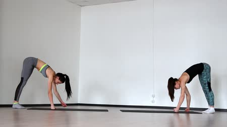 pilates : Two beautiful girls in sportswear on a gray background are engaged in pilates. Smoothly bend down on the arms perform push-ups.