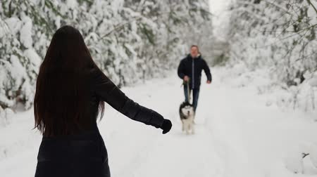 siberiano : In the winter forest, the girl stands with her back with her hands open, and a man with a husky dog runs to meet her. A woman hugs a dog and smiles. Slow motion.