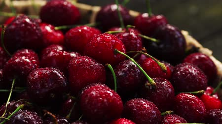 abundância : Fresh cherry with water drops on dark background. Fresh cherries background. Healthy food concept.