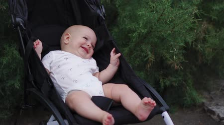 necessity : Baby in sitting stroller on nature Stock Footage