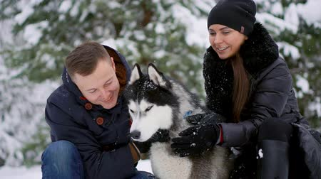 fagyos : Woman and man play with dog in snow. Stock mozgókép