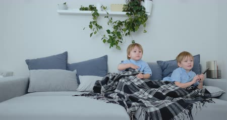 paplan : Two children watch an exciting TV show on TV. Two brothers are watching TV Stock mozgókép
