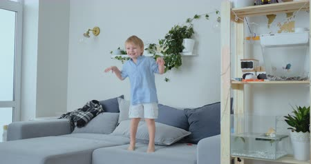 entusiasmo : A 4 years old boy with white hair and a blue shirt jumps and smiles on the sofa. Fun and baby at home. Prank and pampering Stock Footage