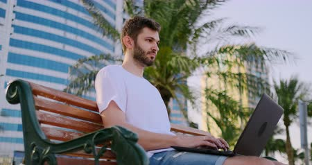 computer programmer : A young man in the summer of palm trees sitting with a laptop and typing on the keyboard