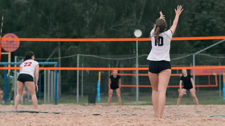 recibidor : Professional volleyball serve woman on the beach tournament. Volleyball net the player blocks the view when applying Archivo de Video