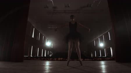 tüt : SLOW MOTION: Ballerina dancing in Pointe shoes on stage in smoke in the dark light back view. the camera moves on gimbal.