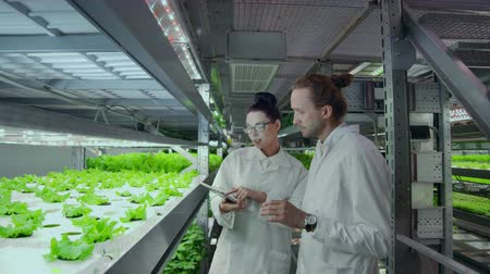 steril : Modern scientists are engaged in the development of healthy food production by growing them in vertical automated farms. Analysis of data using a laptop and tablet computer.