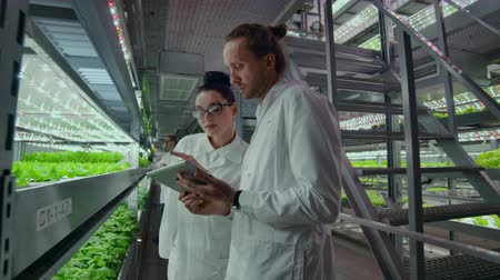 バイタル : People in white coats walk around a modern farm collecting statistics for analysis and debating the success of genetic engineering. The concept of the modern farm of the future