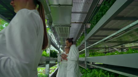 farmacologia : Scientists in white coats with a laptop go along the corridor of the farm with hydroponics and discuss the results of gene studies on plants. Look at the samples.