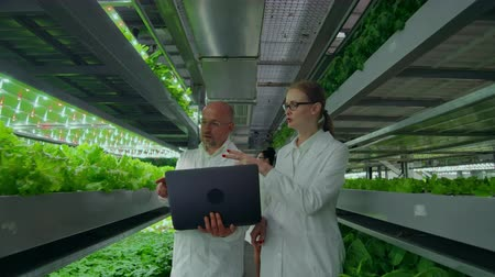 scholar : Man and a woman with a laptop in white coats, scientists go down the corridor vertical farm.