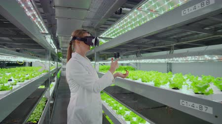 inspektor : Scientists a woman in a white Bathrobe to use sunglasses is really a virtual farm with hydroponics for irrigation control. Geneticists analyze the composition of vegetables growing on plantations