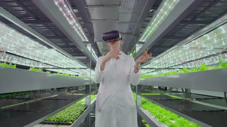 inspektor : A woman in a white robe standing in the hallway of vertical farming with hydroponics with glasses virtualnoy reality around the green showcases with vegetables