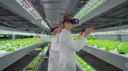 competenza : The use of virtual reality glasses in a modern farm scientists lead the process of genetic modification of plants