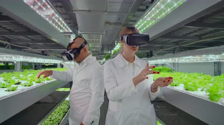competence : Male and female white lab coats use virtual goggles to control the growth and development of plants and vegetables control irrigation systems and fertilizer temperature