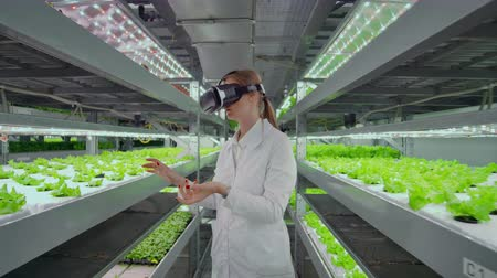 competence : Modern woman microbiologist use virtual reality glasses to control and control the climate on a modern farm to grow eco-friendly vegetables.