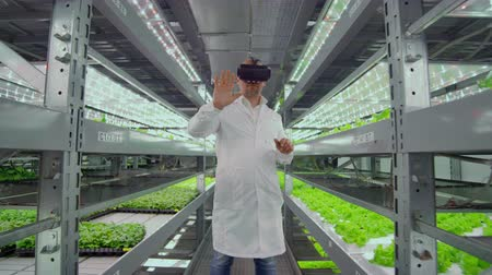 competence : Scientists a man in a white lab coat use glasses virtual reality in the farm with the hydroponics for irrigation control. Geneticists analyze the composition of vegetables growing on plantations.