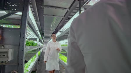 оценка : Scientists men and women work moving through the corridors of a modern metal farm for growing vegetables and herbs examining the shelves with green plants and entering data into the computer.