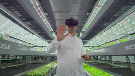 competence : Male scientist in a white coat standing in the hallway of vertical farming with hydroponics with glasses virtualnoy reality around the green showcases with vegetables
