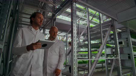 dikkatli inceleme : Group of modern scientists in white coats with computer in their hands discuss and talk looking at samples of green plants