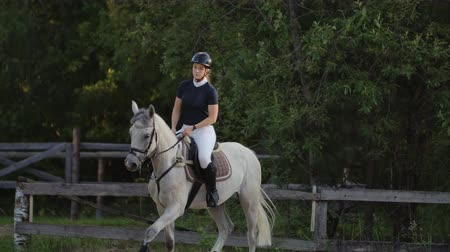 yele : Professional girl rider galloping on a horse. Girl riding a horse on an arena at sunset. Horse hoof creates a lot of dust. Competitive rider training jumping